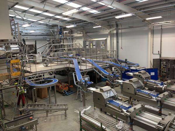 Rathbones bakery conveyor system